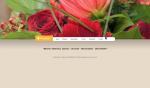 bloemen helianthus koos Moof grafisch ontwerp voor de realisatie van haar website.