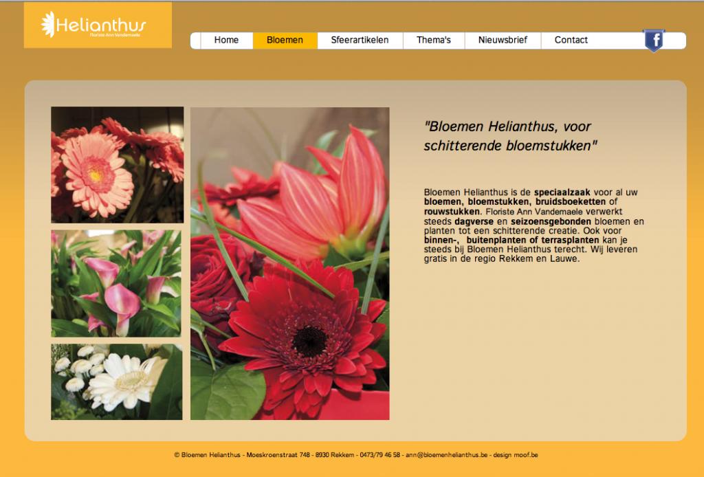 Bloemenhelianthus. Thema pagina