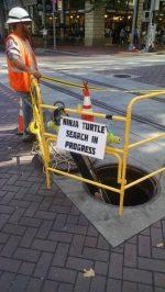 beware of the turtle…..